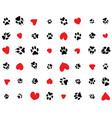 dogs paws and hearts vector image
