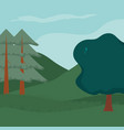 forest landscape cartoon vector image vector image