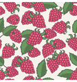 Hand drawn raspberry seamless pattern vector image
