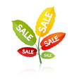leaves sale vector image vector image