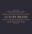 luxury brand vintage gold logotype with ornaments vector image