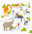 people love and look at wild animals in zoo vector image vector image