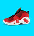 realistic sport basketball shoe for training and vector image