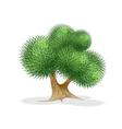 strange tree vector image vector image