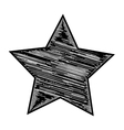 Black and white star vector image vector image