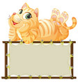 board template with cute cat on white background vector image vector image