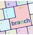branch word on keyboard key vector image vector image