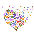 color birds flying with heart vector image