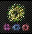 firework bright pyrotechnic petard rocket vector image
