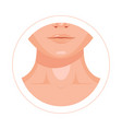 human throat clavicle lips and nose design icon vector image