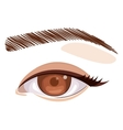 Isolated eye and look concept vector image vector image