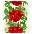 seamless border bouquet with tropical flowers vector image vector image