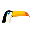 toucan bird icon vector image vector image