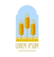 bread wheat logo design template farm or vector image vector image