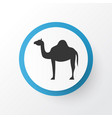 camel icon symbol premium quality isolated animal vector image vector image