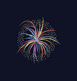 cartoon firework celebration explosion on black vector image vector image