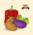 colorful poster of organic best food with peppers vector image vector image