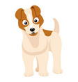 cute dog stands and looks vector image