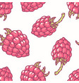 hand drawn seamless pattern with raspberry vector image vector image