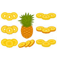 on theme big set different types yellow tropical vector image