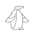 penguin line icon sign on vector image