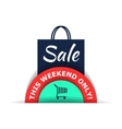 Sale flat vector image