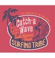Santa Barbara surfing vector image vector image