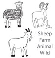 sheep farm animal wild vector image vector image