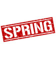 spring square grunge stamp vector image vector image