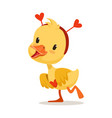 sweet yellow duckling in a red headband with vector image vector image