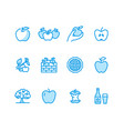 apples flat line icons apple picking autumn vector image