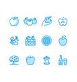 Apples flat line icons apple picking autumn