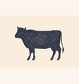 beef cow poster for butchery meat shop vector image vector image