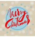 Beige christmas background with christmas red vector image vector image