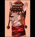 cool llama wearing a wool hat and a red scarf vector image vector image