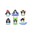 flat set of cute penguin in different vector image