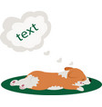 lazy dog cute welsh corgi puppy sleeping icon vector image