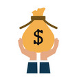 money icon image vector image vector image
