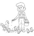 poultry woman feeding chickens vector image vector image