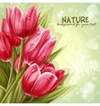Preview background bouquet of pink tulips for your vector image vector image
