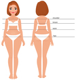 Woman body full length front and back vector image