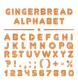 christmas cartoon gingerbread cookies font vector image