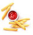 french fries ketchup tomato vector image vector image