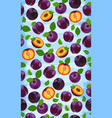 fresh purple plum seamless pattern slices pits vector image vector image