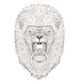 lion head outline vector image