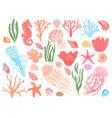 ocean elements cartoon seaweeds corals vector image vector image