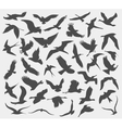 set of silhouettes of birds vector image vector image