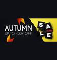 autumn sale season offer flyer template vector image