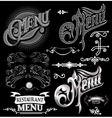 calligraphic elements for design label menu vector image vector image