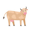 cute milk cow flat isolated on vector image